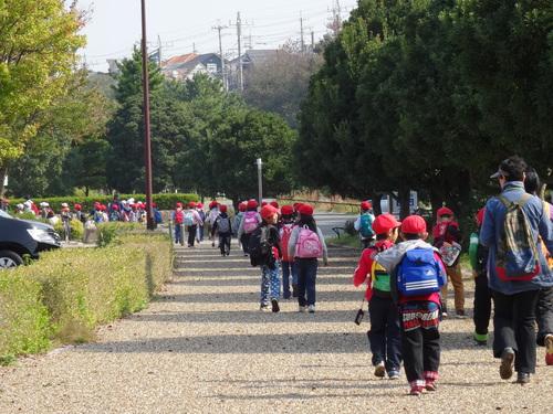淡輪小学校1年生遠足サポート  in  うみべの森_c0108460_2139116.jpg