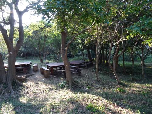 孝子の竹林整備が終了しました・・・定例活動日_c0108460_23171564.jpg