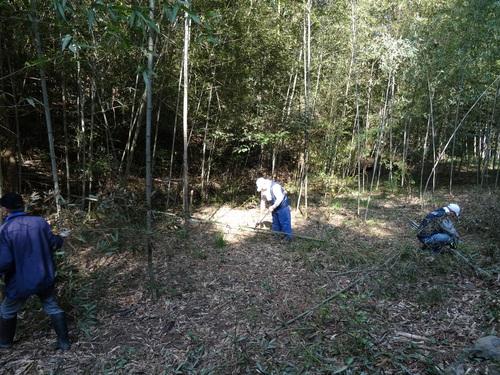 孝子の竹林整備が終了しました・・・定例活動日_c0108460_23225066.jpg
