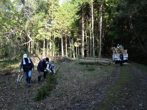 孝子の竹林整備が終了しました・・・定例活動日_c0108460_23271672.jpg