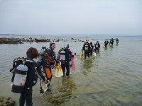 11月2日(土)3日(日)白浜TOUR★_f0079996_1811889.jpg