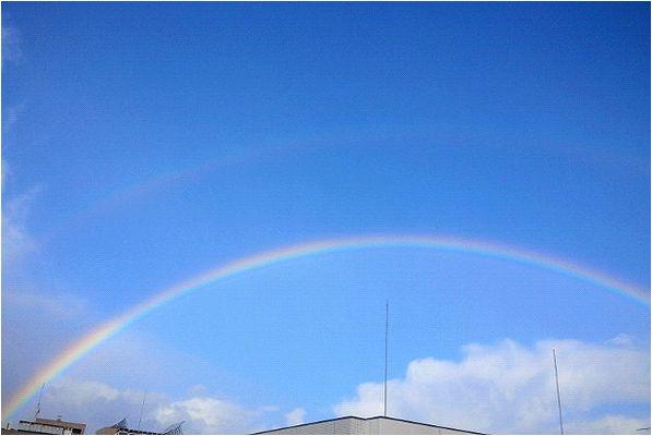 今朝、窓をあけると_b0067302_2035053.jpg