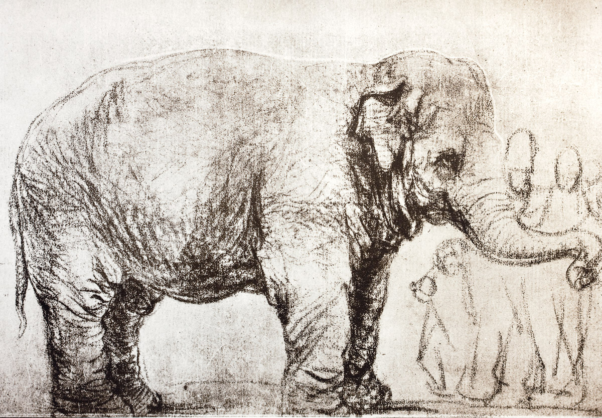 分子生物学と芸術が書き換えたアジアゾウの分類基準標本_c0025115_18451984.jpg