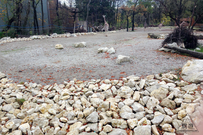 361 Hellabrunn Zoo ~ミュンヘンの動物園~_c0211532_21365177.jpg