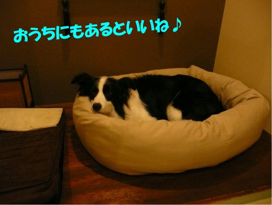 c0147241_2143650.jpg
