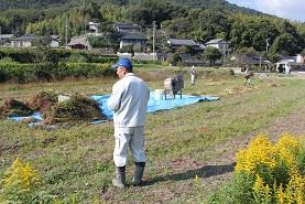 蕎麦の収穫_e0175370_12524941.jpg