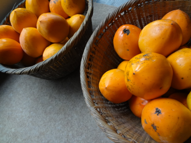 柿とレモン_f0148927_21471842.jpg