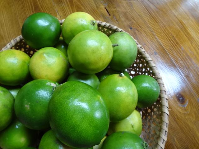 柿とレモン_f0148927_21525673.jpg