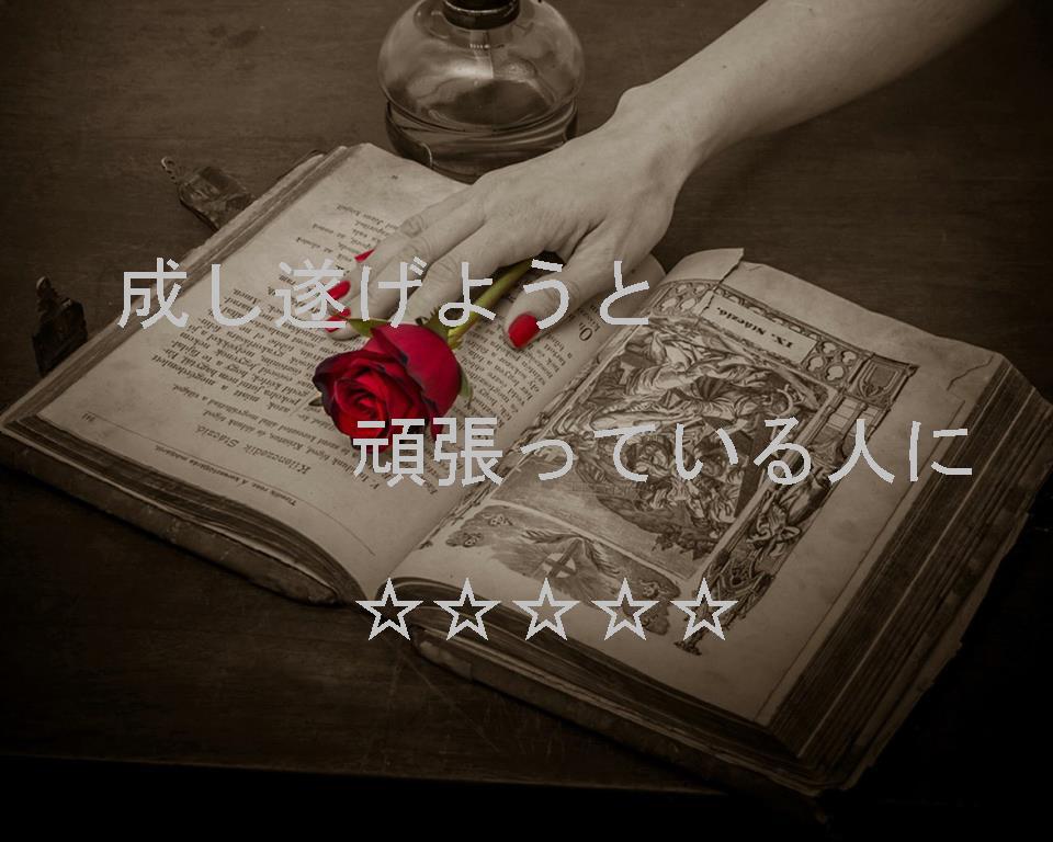 c0306635_045566.jpg