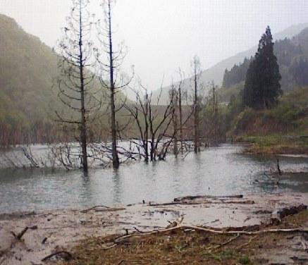 徳山ダムの水は「品質保証」されていない_f0197754_2124319.jpg