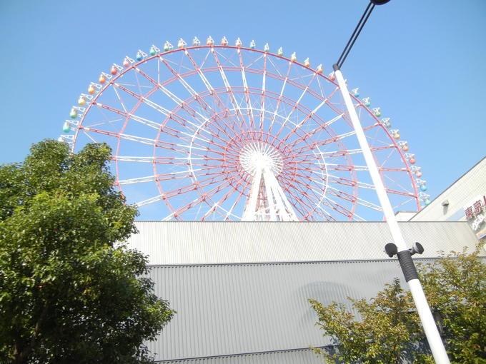 '13,11,7(木)昨日は東京見物に行ったよ!_f0060461_142693.jpg