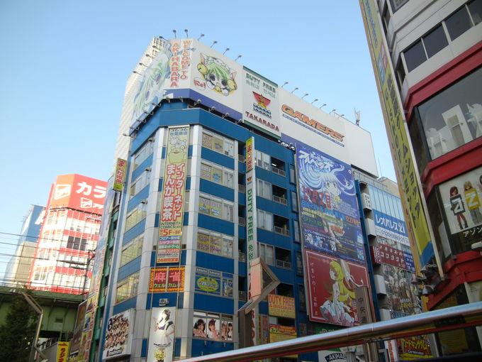 '13,11,7(木)昨日は東京見物に行ったよ!_f0060461_150485.jpg