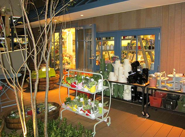 how\'s 熊本店さん オープンしました_f0171785_17554926.jpg