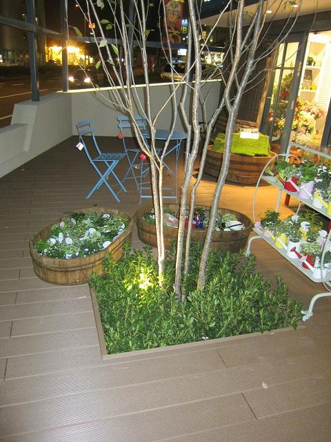 how\'s 熊本店さん オープンしました_f0171785_17564787.jpg