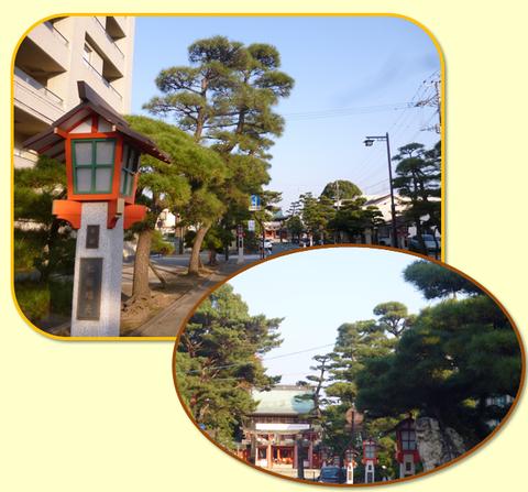 藤崎八旛宮の境内と参道♪_b0228113_14194955.png