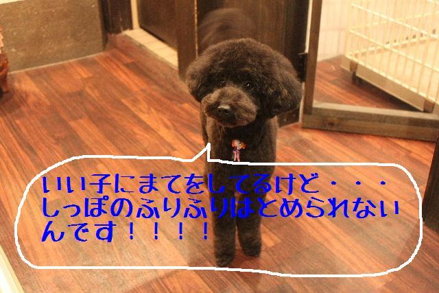 小学生ぶり!!_b0130018_14404828.jpg