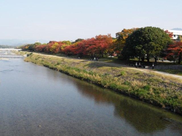 京の寄り道 紅葉の鴨川ハイウェイ_e0230141_1385063.jpg
