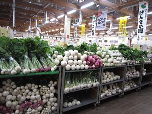 採れたて野菜あれこれ_c0141652_11344155.jpg