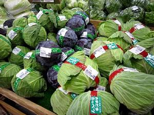 採れたて野菜あれこれ_c0141652_1215661.jpg