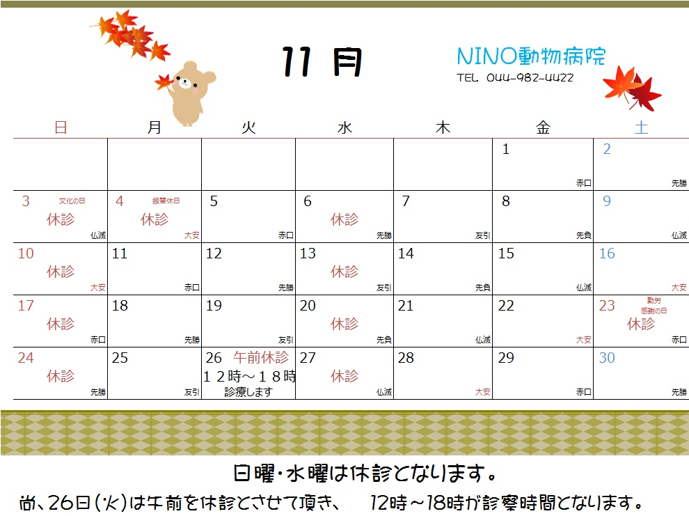 11月の休診日_e0288670_10372943.jpg
