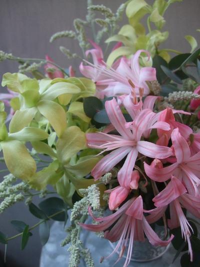 オークリーフ(㐂八さん、9周年のお花)_f0049672_1411339.jpg