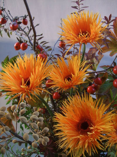 オークリーフ(㐂八さん、9周年のお花)_f0049672_14211296.jpg