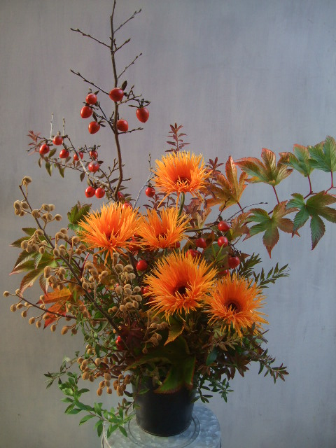 オークリーフ(㐂八さん、9周年のお花)_f0049672_14242773.jpg
