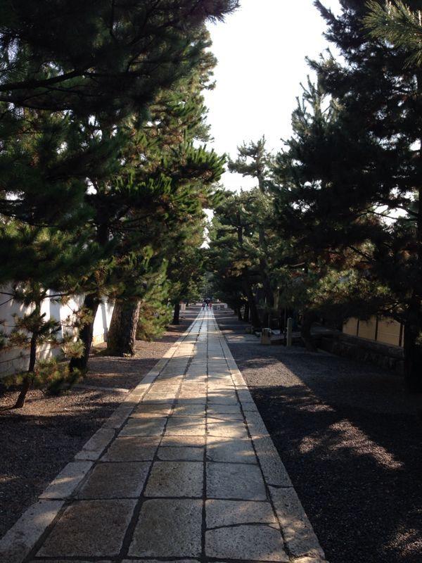 妙心寺から祇園へ_c0100195_14103650.jpg