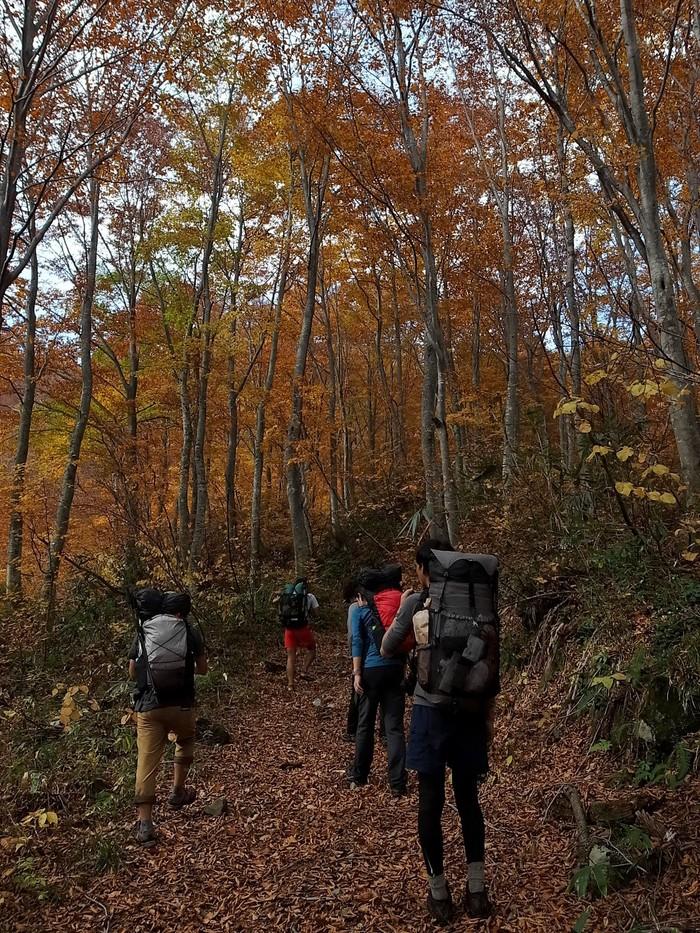 2013.11.3-4 谷川岳を歩いて泊まる山旅 day1_b0219778_19213569.jpg