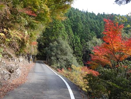 初めての霧越峠と紅葉狩り_e0201281_21191466.jpg