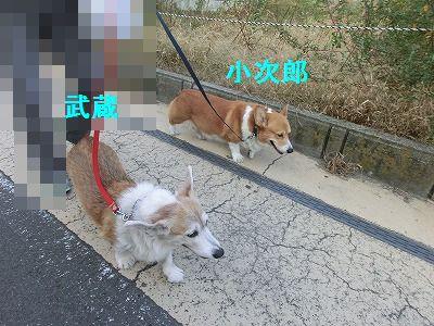 審査員特別賞_e0222588_14354320.jpg