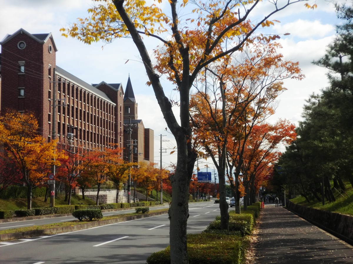 奈良先端科学技術大学院大学 と、同志社大学、京田辺!キャンパスへ~!_d0060693_19245390.jpg