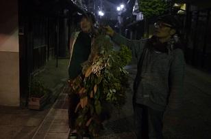 看板(かんばん)!~フボーと植物展 白Ⅱ~_f0226293_8143554.jpg