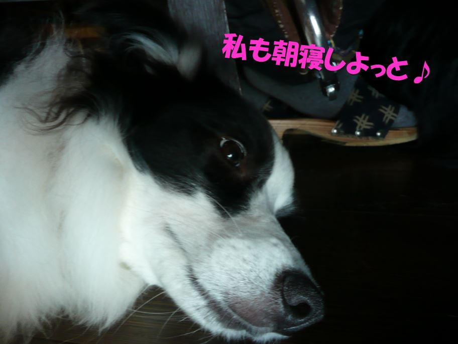 c0147241_20115510.jpg