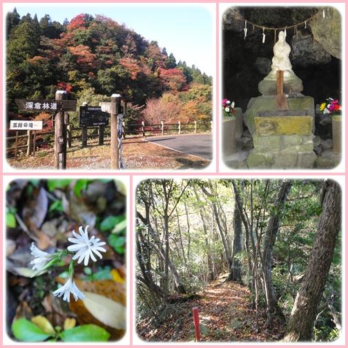 岳減鬼山~障子ヶ岳_e0164643_13584450.jpg