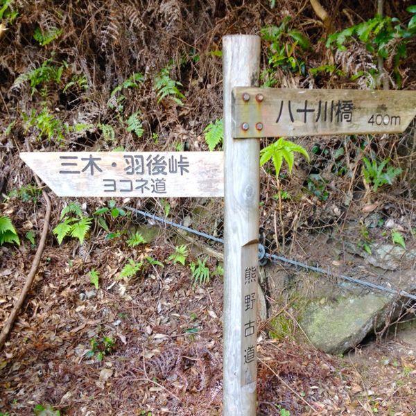 熊野古道@ 三木峠-羽後峠コース_e0292546_738172.jpg