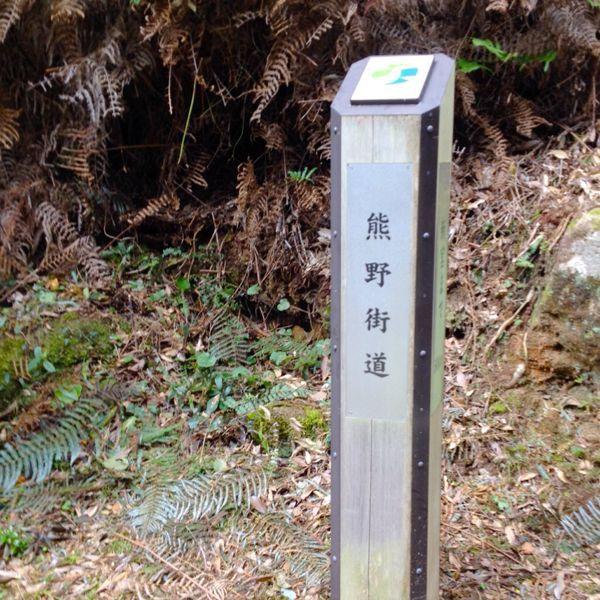 熊野古道@ 三木峠-羽後峠コース_e0292546_7382149.jpg