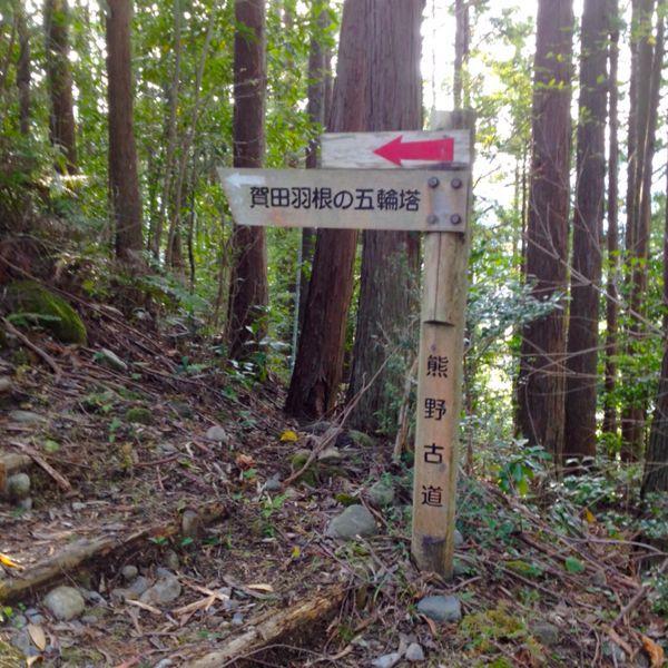 熊野古道@ 三木峠-羽後峠コース_e0292546_7384731.jpg