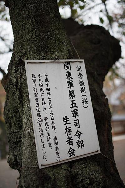 2013/11/10 九段下から早稲田まで:その1_b0171364_1324034.jpg