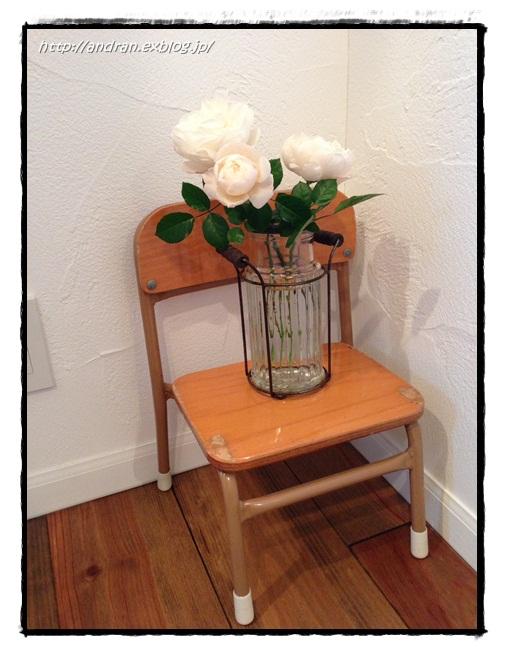 【玄関】 多肉植物と幼稚園椅子_c0176271_23212857.jpg