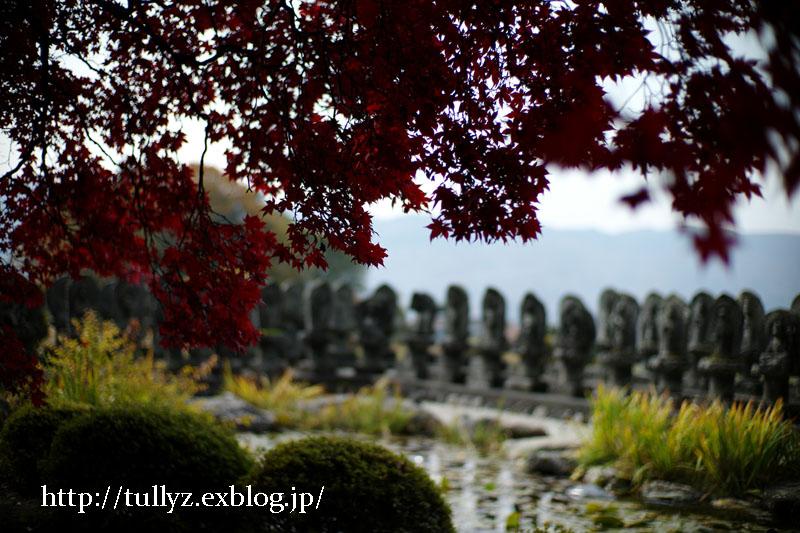 秋の長円寺(3)_d0108132_172824.jpg