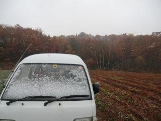 雪へ_d0122374_17544418.jpg