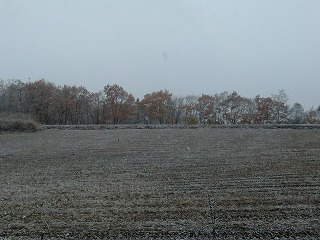雪へ_d0122374_17545628.jpg