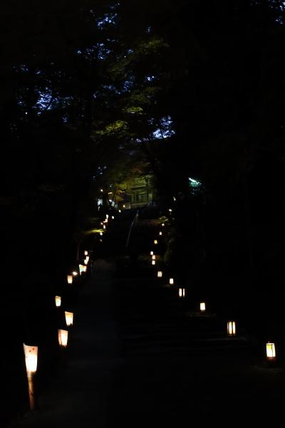 神護寺_e0051888_4504648.jpg