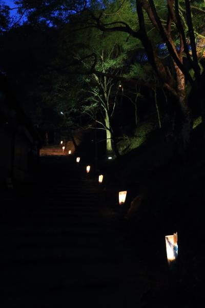 神護寺_e0051888_4512679.jpg