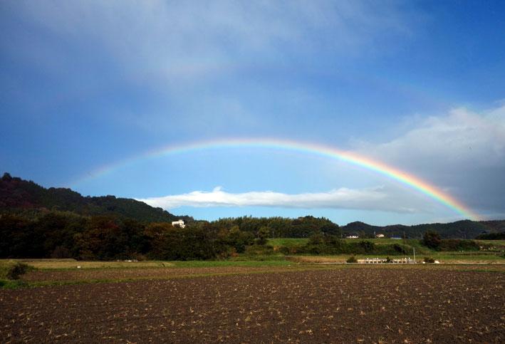 きのうの2時に虹がでた_b0145296_1450555.jpg