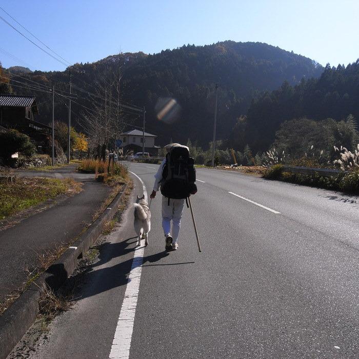 Memory of the second pilgrimage with husky HANA_c0049299_17511869.jpg