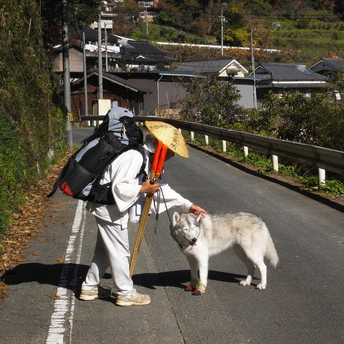 Memory of the second pilgrimage with husky HANA_c0049299_17522463.jpg
