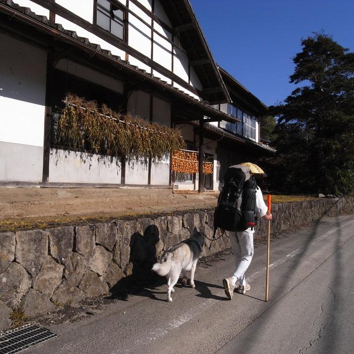 Memory of the second pilgrimage with husky HANA_c0049299_17525761.jpg