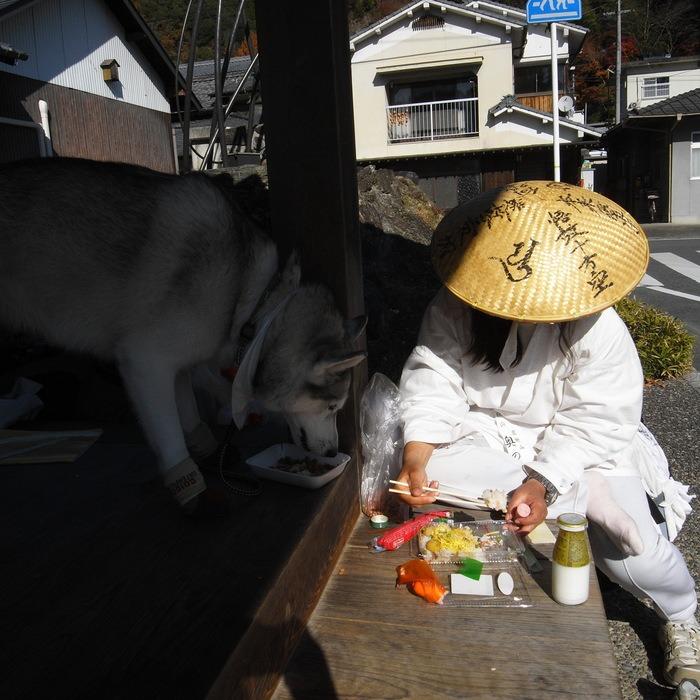 Memory of the second pilgrimage with husky HANA_c0049299_17545442.jpg